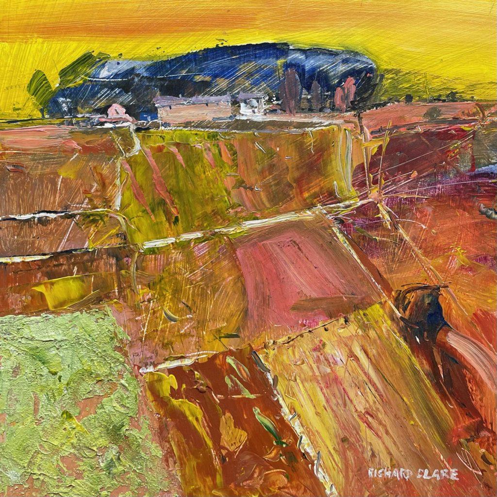 Richard Clare. Derbyshire Fields